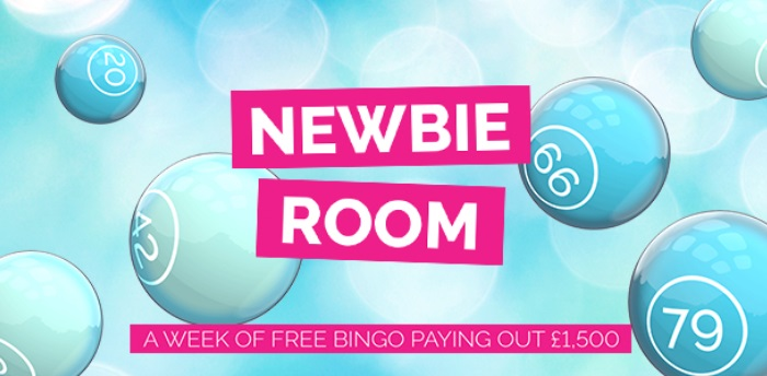 Fabulous Bingo Newbie Room